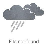 инфографика_цель за целью.png